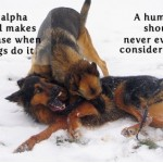 Dog behavior, dog body language, Alpha roll