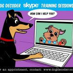 Private Online Dog Training Lessons with Jill Breitner