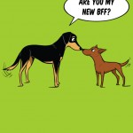 dog training, dog body language